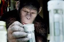 Contagion Scriptwriter Hired By Fox To Pen Rise Planet Of The Apes Sequel
