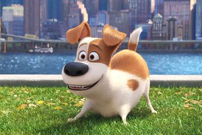 Secret Life of Pets Sequel in the Works