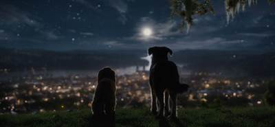 Disney+ Offers Glimpse of Live Action Lady and the Tramp