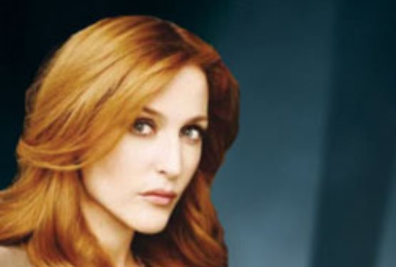 X-Files Star Gillian Anderson Holds Charity Auctions on eBay