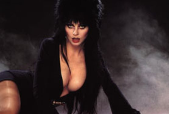 Elvira Returns To Florda for Screamfest 2008