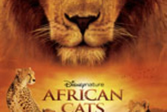 Disneynature's African Cats is the Perfect Way To Celebrate Earth Day!