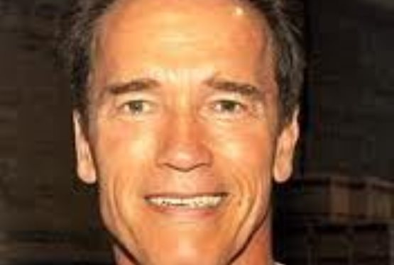 Schwarzenegger and Satllone Team Up for The Tomb