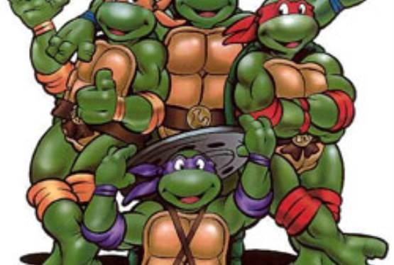 Teenage Mutant Ninja Turtles Film Shutdown