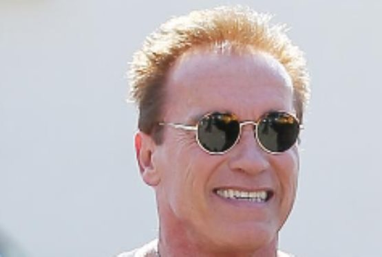 Arnold Schwarzenegger In Talks to Star in Toxic Avenger