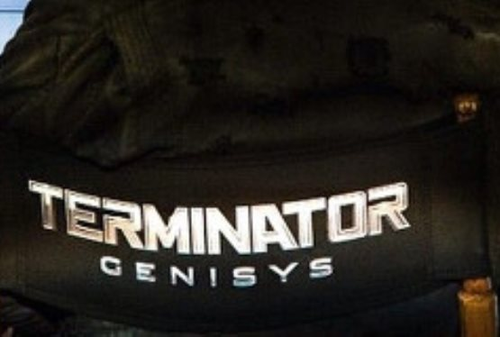 Arnold Schwarzenegger Reveals Latest Terminator Film Title