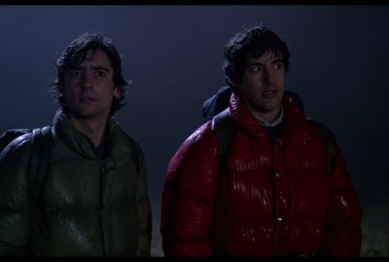 An American Werewolf in London to Get Reboot