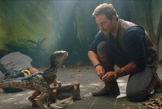 Jurassic World 3 to be Directed by Colin Trevorrow