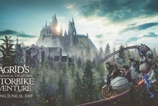 New Experience in The Wizarding World of Harry Potter