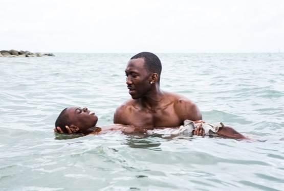 Apple to Release Six Films a Year in Bid for Oscar Worthy Films