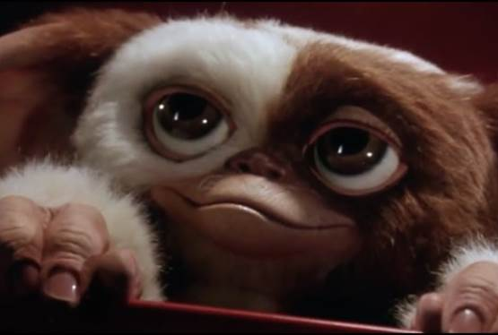 Animated Gremlins Series Given 10-Episode Order