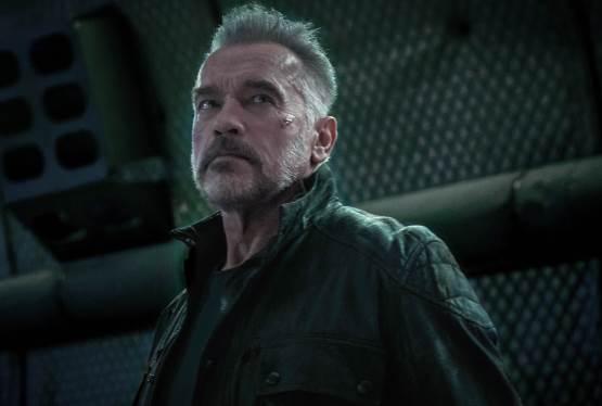 Schwarzenegger Series Given Eight Episode Order by Netflix