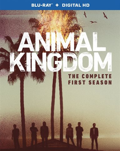 Animal Kingdom: The Complete First Season Blu-ray Review