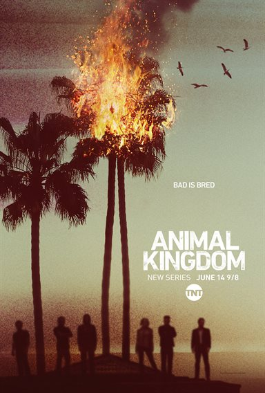 Animal Kingdom © Warner Bros.. All Rights Reserved.
