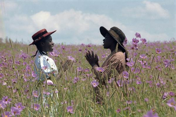 The Color Purple © Warner Bros.. All Rights Reserved.