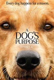 A Dog's Purpose Theatrical Review