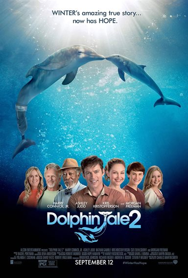 Dolphin Tale 2 © Walt Disney Pictures. All Rights Reserved.