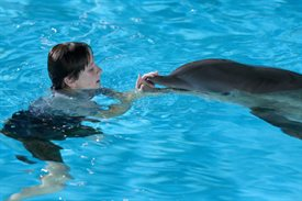 Dolphin Tale © Warner Bros.. All Rights Reserved.