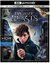 Fantastic Beasts and Where to Find Them 4K Ultra HD Review