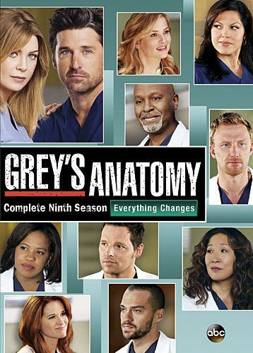 Grey's Anatomy: The Complete Ninth Season DVD Review