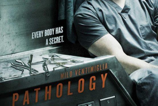 Movie Vault Pathology