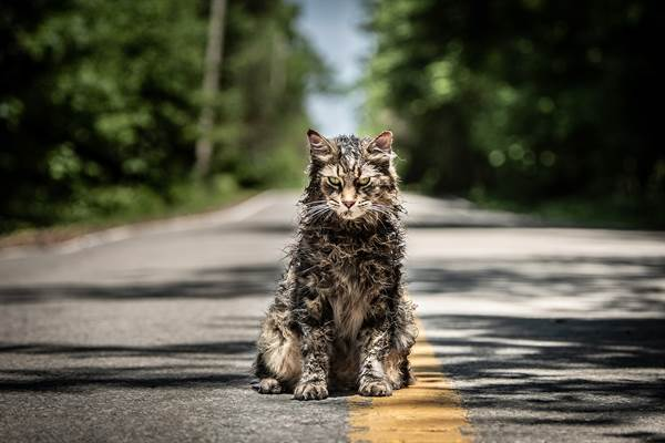 Pet Sematary © Paramount Pictures. All Rights Reserved.