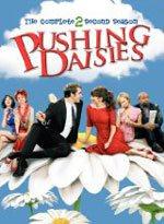 Pushing Daisies Season 2 DVD Review