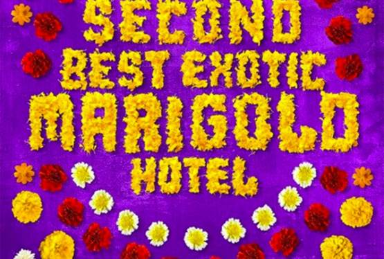 Movie Vault The Second Best Exotic Marigold Hotel