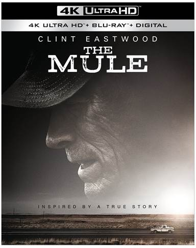 The Mule 4K Ultra HD Review