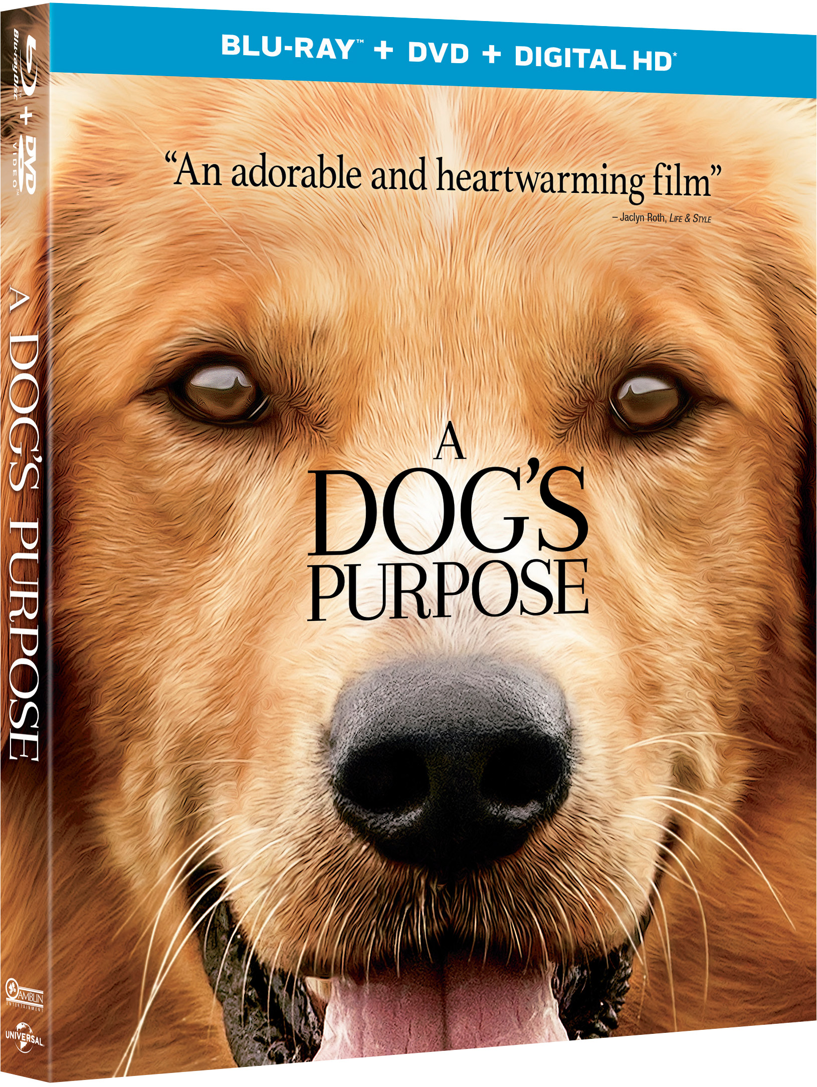 a dog 39 s purpose blu ray review a dog 39 s purpose 2017 flickdirect. Black Bedroom Furniture Sets. Home Design Ideas